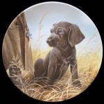 Command Performance: Field Puppies By Lynn Kaatz
