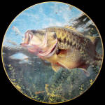 On Top: Bass Beauties Mark Susinno Danbury Mint Plate