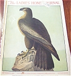 Ladies Home Journal Cover : Eagle: John James Audubon