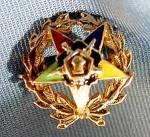 10k Yellow Gold Enameled Order Of Eastern Star Pin