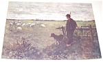 Farm & Country Print: Pasture: Sheep Shepard & Dog