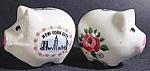New York City Souvenir Pig Shaker Set - Ceramic