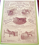 Vintage Equestrian Ads & Prints: Lexington Kentucky 1919