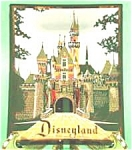 Disneyland Castle Glass Astray