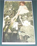 Antique & Vintage Prints : Children: Fairies: Sarah Stilwell