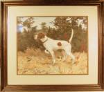 J Randy Rowe Watercolor Of Champion Dog Pantagleize 1973
