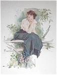 Victorian Lady On The Fence -christy Print