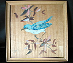 Vintage Blue Bird Picture And Frame