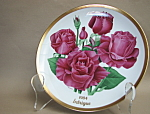 American Rose Society Intrigue Collector Plate 1984