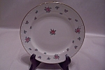 "Homer Laughlin Rambler Rose 6"" Plate"