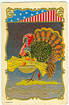 Antique Embossed Postcard Thanksgiving Day Turkey
