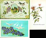 Antique Greeting Postcards: Lot Of 3 : Birds