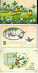 Antique Greeting Postcards: Lot Of 3 : Birds, Shamrocks