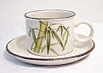 Midwinter Rangoon Cup & Saucer Sets Wedgwood Bamboo