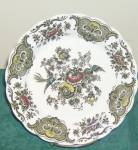 Ridgway Windsor (Multi Color) Salad Plate