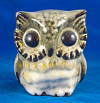 Howard Pierce Small Owl