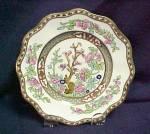 Coalport Indian Tree (Multi Color Sc) Luncheon Plate