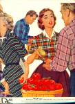 Autumn Cottons By Danriver Ad 1955