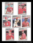 St. Louis Cardinals 1989 Fleer Baseball Cards 7 Pc