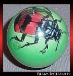 Club Earth 1992 Burying Beetle