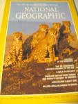 Vintage National Geographic Magazine May 1980