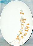 Franciscan Fan Tan Platter