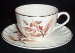 Ws George Bolero B8818 Cup And Saucer