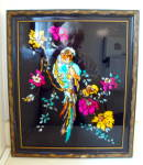 Framed Parrot Picture