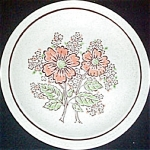 Homer Laughlin Orange Floral Dinner Plate
