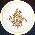 Homer Laughlin Harvest Bread Plate