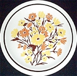 Homer Laughlin New Paradise Dinner Plate