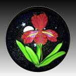"Mayauel Ward 2013: Red ""flora Luna"" Iris & Full Moon Paperwt"