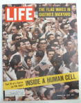 Life Magazine-march 29, 1963-flag Waves