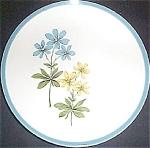 Homer Laughlin Blue Duchess Luncheon Plate