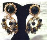 Larry Vrba Earrings