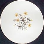 Knowles Sun Light Dinner Plate