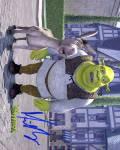 Mike Myers Shrek Autographed Signed Photo