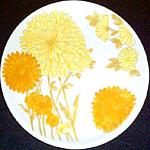 Scio Contessa Salad Plate