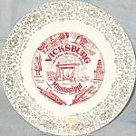 Vicksburg Mississippi Military Park Souvenir Plate