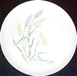 Stetson Pastel Wheat Dinner Plate