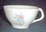 Steubenville Fairlane Cup