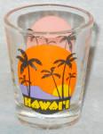Hawaii Souvenir Shotglass