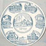 Chambersburg Pennsylvania Moose Lodge Plate