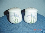 Corelle Shadow Iris Salt And Pepper Shakers