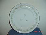 Johann Haviland Forever Spring Dinner Plates
