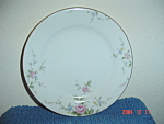 Noritake Firenze Bread And Butter Plates
