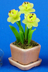 Dollhouse Miniature Daffodil Flowers In Planter