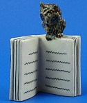 E270 Owl On Open Book