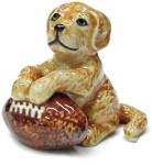 R246c Retriever Puppy With Football