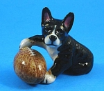 R246 Puppy With Football